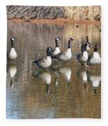 Canadian Geese Watching Fleece Blanket