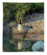 Canadian Goose Reflection Fleece Blanket