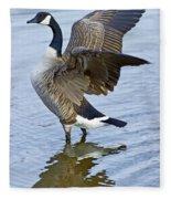 Canadian Goose Stretching Fleece Blanket