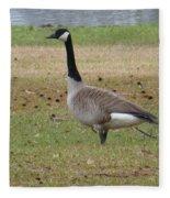 Canadian Goose Strut Fleece Blanket