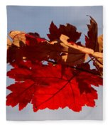 Canadian Maple Leaves In The Fall Fleece Blanket