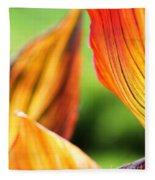Canna Lily Named Durban Fleece Blanket