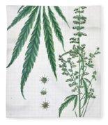 Cannabis Fleece Blanket