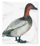 Canvasback Duck  Fleece Blanket