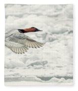 Canvasback Duck In Flight Fleece Blanket