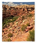 Canyon At Calf Creek Fleece Blanket