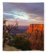 Canyon Rim Tree Fleece Blanket