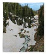 Canyon Scenery Fleece Blanket