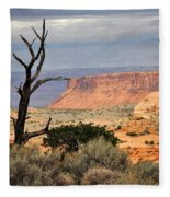Canyon Vista 2 Fleece Blanket