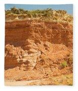 Canyonlands In West Texas Fleece Blanket