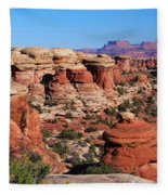 Canyonlands National Park Fleece Blanket