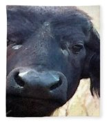 Cape Buffalo Up Close And Personal Fleece Blanket