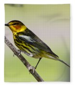 Cape May Warbler Fleece Blanket