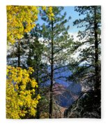 Cape Royal Grand Canyon Fleece Blanket
