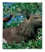 Capybara And Jacana Fleece Blanket