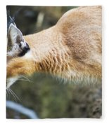 Caracal About To Jump Fleece Blanket