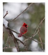 Cardinal - A Winter Bird Fleece Blanket