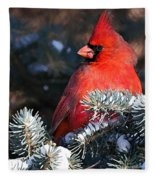 Cardinal And Evergreen Fleece Blanket