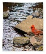 Cardinal By The Creek Fleece Blanket