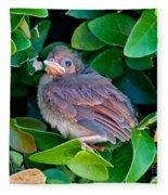 Cardinal Chick Fleece Blanket