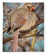 Cardinal Female Fleece Blanket