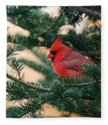 Cardinal In Balsam Fleece Blanket
