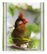 Cardinal In Dogwood Fleece Blanket