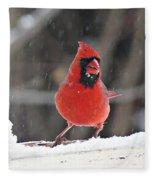 Cardinal In Snowstorm Fleece Blanket