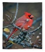 Cardinal In The Berries Fleece Blanket
