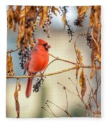 Cardinal In The Pokeberries Fleece Blanket