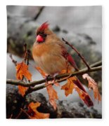 Cardinal In The Rain Fleece Blanket