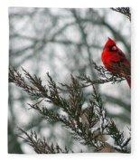Cardinal In Winter Fleece Blanket
