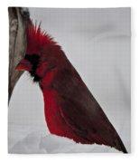 Cardinal 1 Fleece Blanket