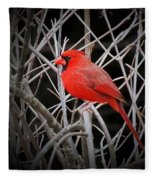 Cardinal Red With Black Fleece Blanket