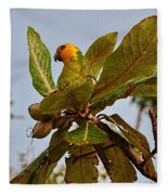 Caribbean Parakeet Fleece Blanket