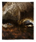 Carlsbad Caverns #3 Fleece Blanket