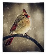 Carolina Cardinal Fleece Blanket
