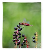 Carolina Saddlebags Fleece Blanket