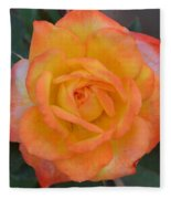Caroty Splendor - Rose Fleece Blanket