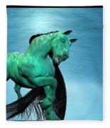 Carousel Vi Fleece Blanket