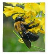 Carpenter Bee Fleece Blanket