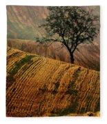 Carpet Fields Of Moravia Fleece Blanket