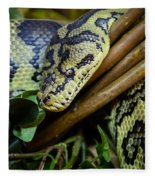 Carpet Python  Fleece Blanket