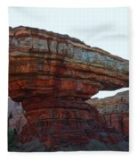 Cars Land Canyon Fleece Blanket