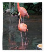 Cartoon - A Flamingo In The Small Lake In Their Exhibit In The Jurong Bird Park Fleece Blanket