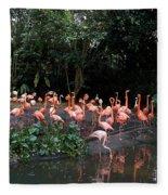 Cartoon - Flamingos In Their Exhibit Along With A Small Lake In The Jurong Bird Park Fleece Blanket