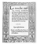 Cartouches, 1537 Fleece Blanket