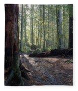 Cascades Forest Path Fleece Blanket