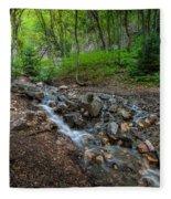 Cascades Of The Forest Fleece Blanket