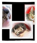 Cat Family Fleece Blanket